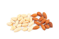 Peeled and unpeeled almond nuts Stock Images
