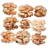 Peeled walnut kernels Stock Photography