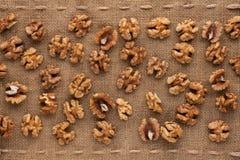 Peeled walnut Stock Images