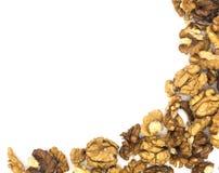 Peeled walnut on white background royalty free stock image