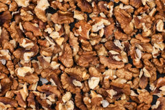Peeled walnuts Stock Image
