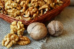 Peeled walnuts in a basket Royalty Free Stock Images