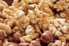 Peeled walnuts close up Royalty Free Stock Photos