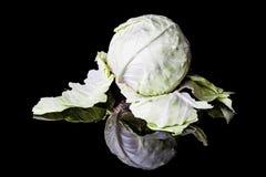 Peeled white cabbage Stock Image