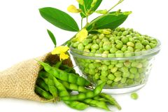 Peeled and whole Pigeon peas Royalty Free Stock Image