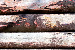 Peeled wood. Royalty Free Stock Images