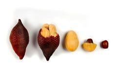 Peeled Zalacca fruit isolated on white background. Royalty Free Stock Images