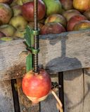 Peeler της Apple Στοκ εικόνες με δικαίωμα ελεύθερης χρήσης