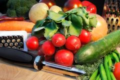 Peeler, graters and fresh organic vegetables Stock Photography