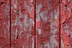 Peeling Barn Wood. The closeup of the old barn wood shows the peeling paint and grey wood stock photography