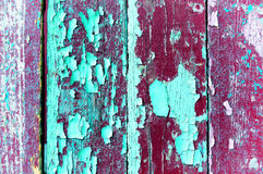 Peeling bright violet and turquoise paint on old weathered wood - textured background Royalty Free Stock Photos