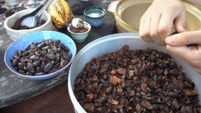 Peeling Cocoa Beans with Hands stock video footage