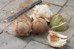 Peeling coconut using a knife. royalty free stock image