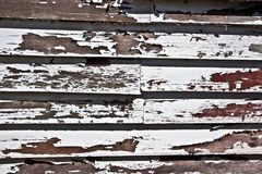 Peeling and Flaking. Old paint peeling off the wood Royalty Free Stock Photo