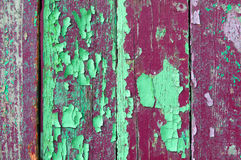Peeling green and purple paint on old weathered wood - textured background Royalty Free Stock Photo