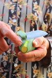 Peeling mango Stock Images