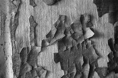 Peeling old paint on the wall royalty free stock photos