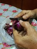Peeling onion. Hands is peeling onion using knife Stock Photography