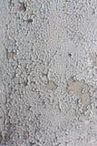 Peeling paint. Royalty Free Stock Photo