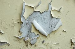 Peeling paint. Paint peelling off a grungy wall Stock Images