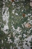 Peeling paint background Stock Photo