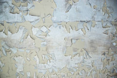 Peeling Paint on cement background texture Stock Photography