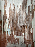 Peeling paint on an old wall Royalty Free Stock Image