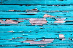 Peeling paint on old weathered wood - textured background Royalty Free Stock Image