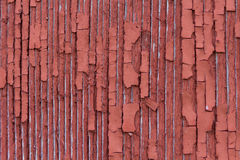 Peeling Paint. The typical red paint on a weathered barn, peeling Stock Image