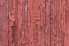 Peeling Paint. The typical red paint on a weathered barn, peeling Stock Photos