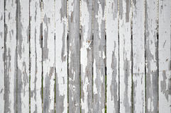 Peeling paint on white picket fence. A background of vertical white fence boards with peeling paint royalty free stock photography