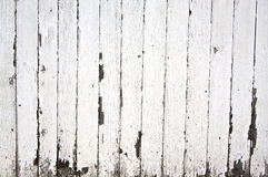 Peeling paint on wooden fence stock photography