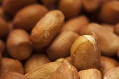 Peeling peanuts Stock Images