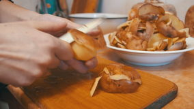 Peeling Potatoes in the Home Kitchen stock footage