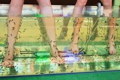 Peeling skin feet of tropical fish Stock Images