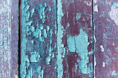 Peeling violet and turquoise paint on old weathered wood - textured background Royalty Free Stock Photo