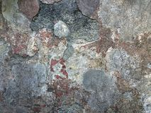 Texture concrete wall crumbled, different colors Stock Photography