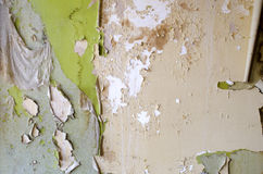 Peeling Wallpaper Stock Photography