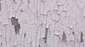 Peeling White Paint on Wood Background Texture Royalty Free Stock Photos