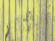 Peeling yellow paint on old wooden wall. Peeling yellow paint on withering, weathered wooden wall royalty free stock image