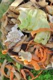 Peelings. Close on vegetable peelings for compost Royalty Free Stock Photos