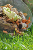 Peelings for compost. Vegetable peelings in a container on the grass Stock Image