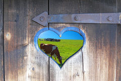 Peep-hole in the outhouse. A heart-formed peep-hole in the door of outhouse Stock Photos