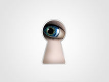 Peeping Eye Royalty Free Stock Photos