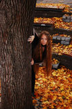 Peeping out. Young girl peeping out of the tree royalty free stock photo