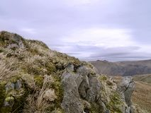 Peeping over small rock and grassy mound. The two blips in background are the Angletarn Pikes Royalty Free Stock Photo