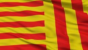 Peer City Flag, Belgio, vista del primo piano Illustrazione Vettoriale