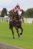 Peer Cooper - corsa di cavalli a Praga immagine stock