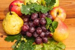 Peer en druiven Stock Afbeeldingen