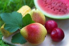 Peer met andere vruchten in de tuin Stock Afbeeldingen